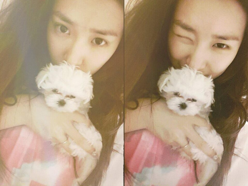SNSD's Tiffany Uploaded a Photo with her Cute Puppy!