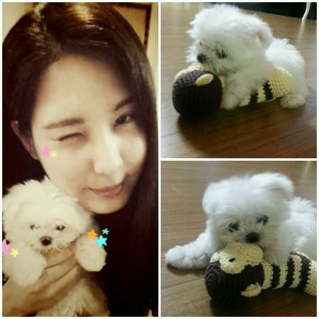 Girls`Generation's Seohyun got a new puppy named Dubu!